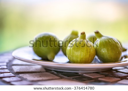 Fresh Ripe Figs collected from Fig Tree in Summer on Italian Farm - stock photo