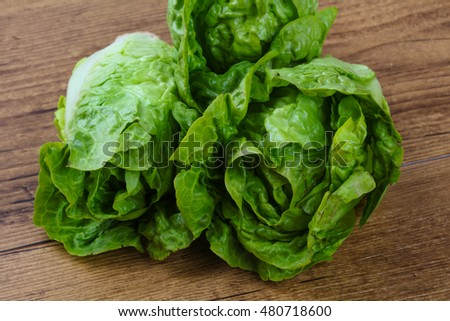 Fresh ripe Green salad ready for eat