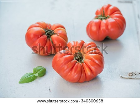 Fresh ripe heirloom tomatoes and basil leaves over light blue wooden background  - stock photo