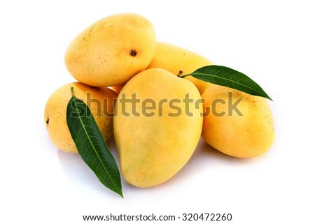 Fresh ripe mangoes on white background