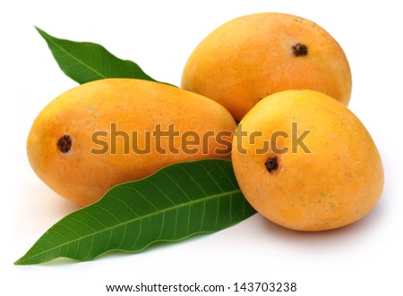 Fresh Ripe Mangoes with green leaves - stock photo