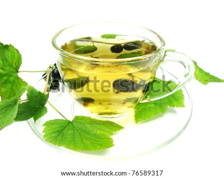 fresh ripe mint leaves isolated on white background