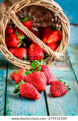Fresh ripe organic strawberries in a basket on a rustic table - stock photo