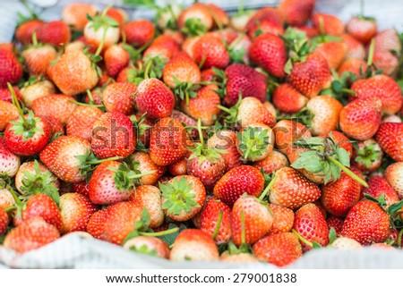 Fresh ripe perfect strawberry. - stock photo