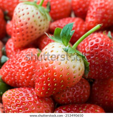 Fresh ripe perfect strawberry - Food Frame Background - stock photo