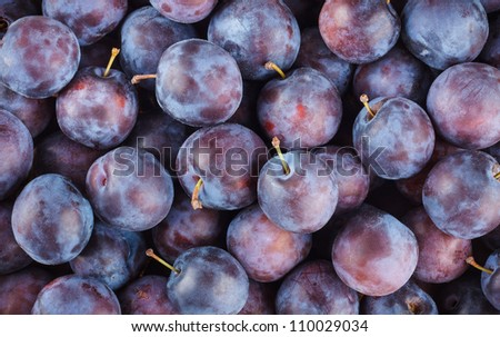 Fresh Ripe Plums or Blackthorns Texture, Background - stock photo