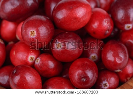 Fresh, ripe, red cranberries on a for background - stock photo