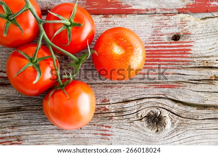 Fresh ripe red juicy tomatoes on the vine lying on a wooden shelf with rustic peeling red paint at a farmers market selling fresh organic produce - stock photo