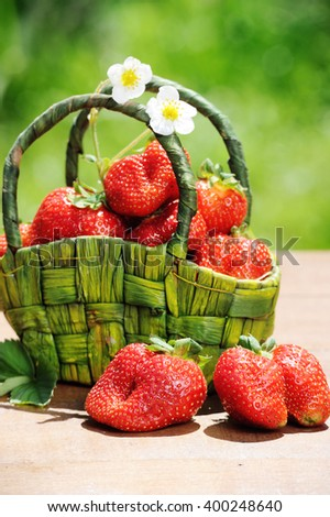 Fresh ripe strawberries in a rustic basket  on wooden table in the garden