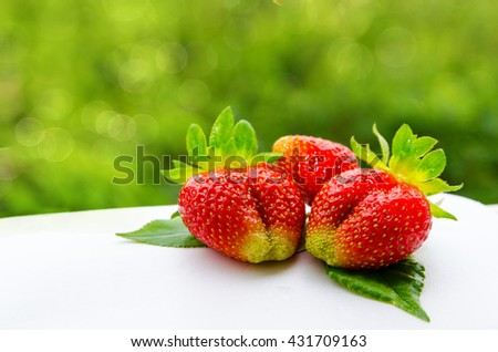 Fresh ripe strawberries on green trees background