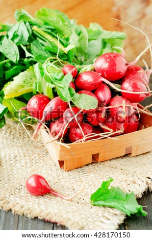 Fresh ripe summer useful vegetables , bunch of radish on a wooden background - stock photo