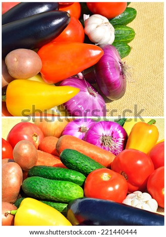 Fresh ripe vegetables closeup. Collage - stock photo