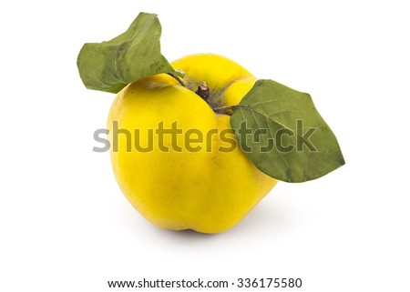 Fresh ripe yellow quince isolated on white background - stock photo