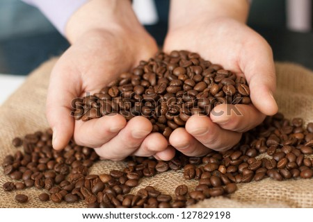 Fresh roasted coffee beans pouring out of cupped hands into a burlap sack - stock photo