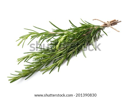 fresh rosemary bunch isolated on white background - stock photo