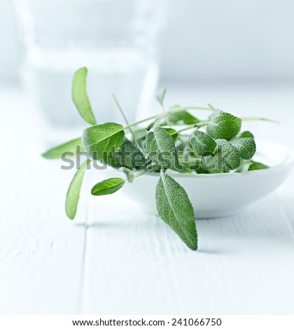 Fresh sage leaves in a ceramic dish - stock photo