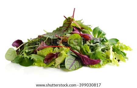 Fresh salad . Different mix of salad leaves