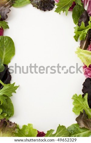 Fresh salad leaves creating a decorative border - stock photo