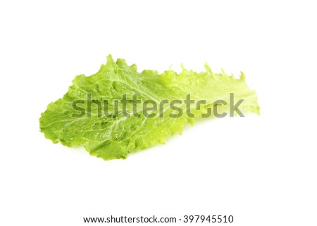 Fresh salad lettuce isolated on a white - stock photo