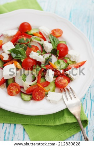 Fresh salad of cheese, tomato, peppers, radishes and cucumber - stock photo