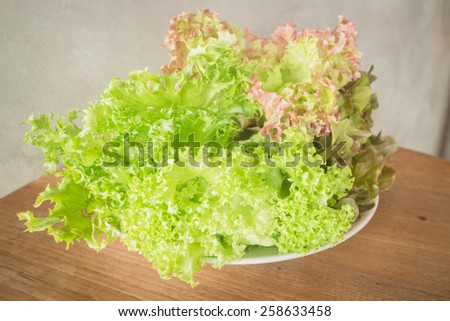 Fresh salad vegetable on wooden background, stock photo