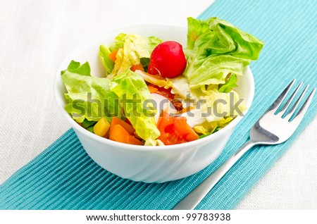 fresh salad with fresh vegetable and chicken - stock photo