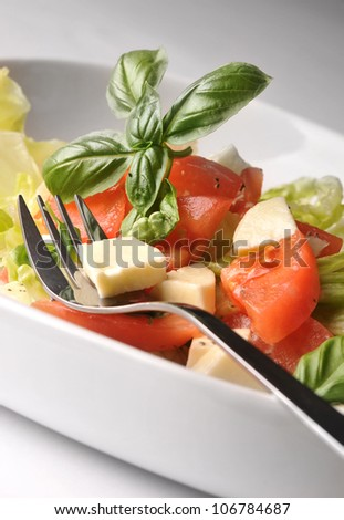 Fresh salad with lettuce and tomatoes