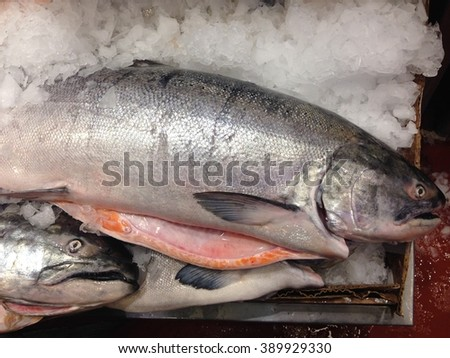Fresh Salmons on ice in the Public Market, Seattle, USA