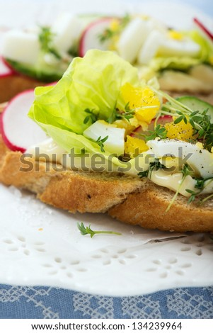 Fresh sandwiches with egg,radish,cucumber and lettuce - stock photo