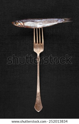 Fresh sardine fish on silver fork isolated on black background. Culinary seafood eating.  - stock photo
