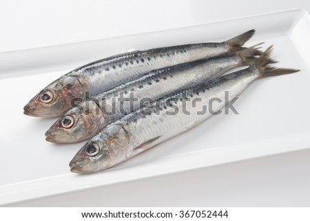Pilchards Fish In Tamil