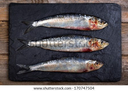 Fresh sardines on black slate board over old wood background - stock photo