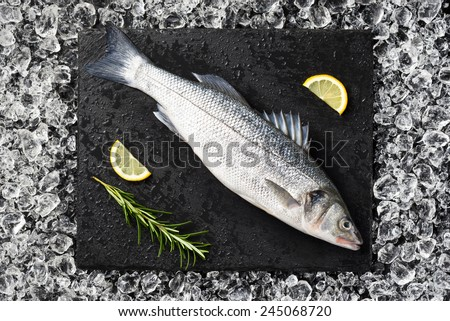 Fresh sea bass fish on ice on a black stone table top view - stock photo