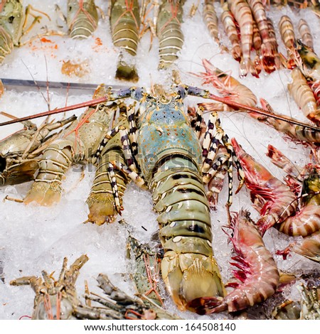 Fresh seafood arrangement displayed in market, ready to cook. - stock photo