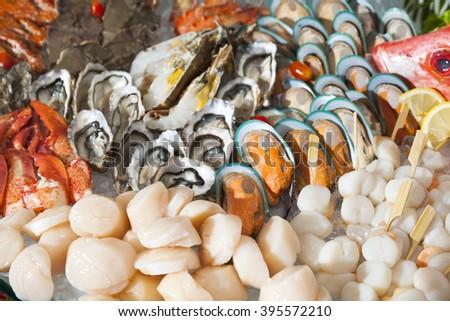 fresh seafood assortment. - stock photo