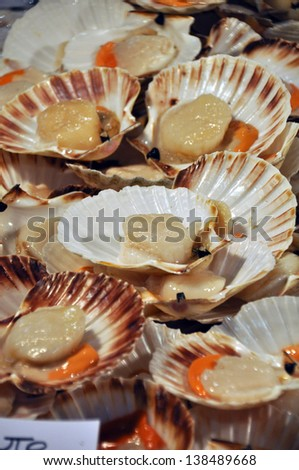Fresh seafood on a fish market in venice, italy - stock photo