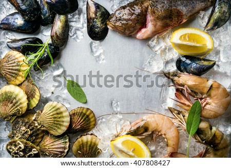 Fresh seafood with herbs and lemon on ice. Prawns, fish, mussels and scallops over steel metal background. Food frame.