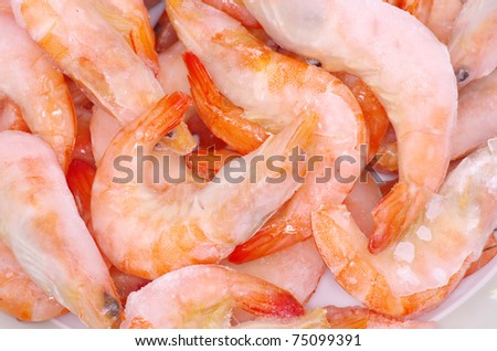 fresh shrimp background close up