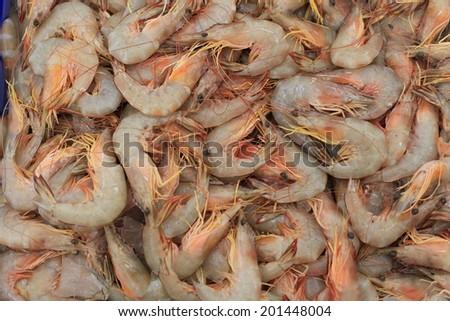 fresh shrimp on sale - stock photo