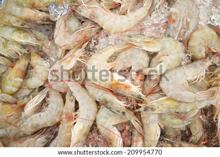 Fresh shrimps in market - stock photo