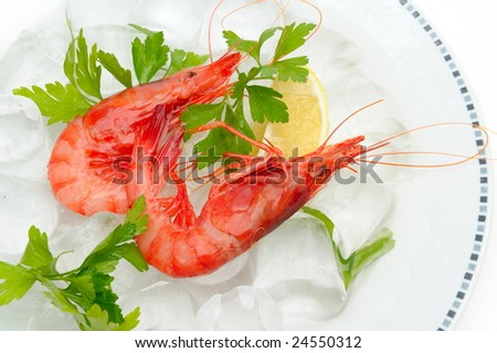 fresh shrimps with lemon on ice