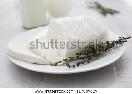 Fresh sliced mozzarella on plate with herbs