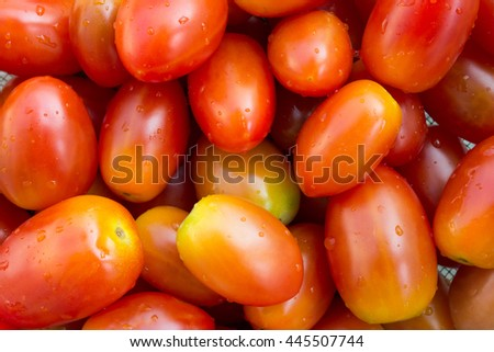 Fresh small tomatoes