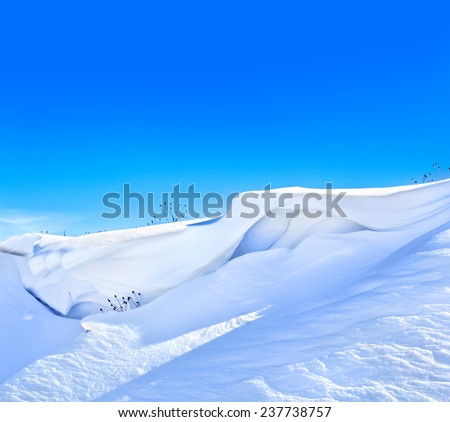 Fresh snow cover in winter
