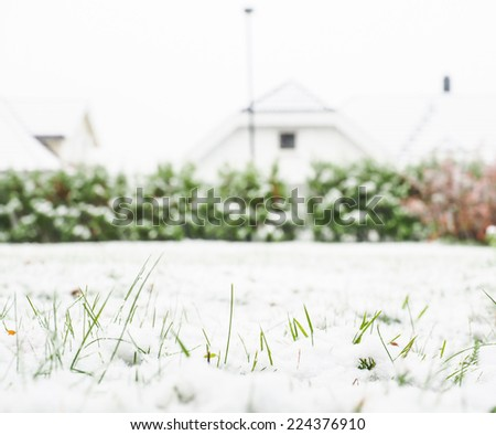 Fresh snow cover over green grass on lawn - stock photo