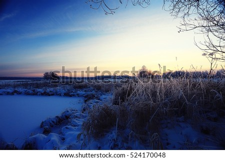 Fresh snow winter background in nature