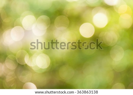 Fresh soft nature green colour bokeh bush tree and sunlight for abstract romantic background
