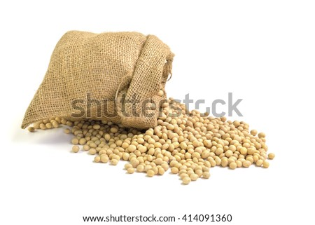 Fresh soy milk and soy beans isolated on white background, selective focus.  - stock photo