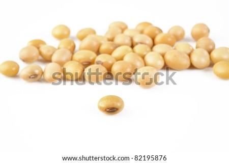 fresh soybeans on white background - stock photo