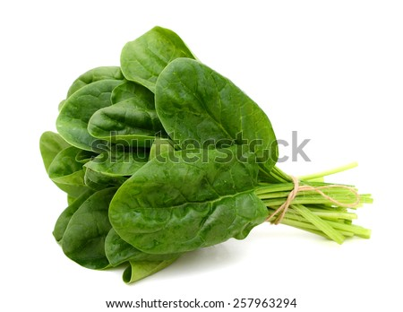 fresh spinach isolated on white   - stock photo